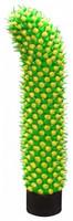 Vibrátor Kaktus - Meloun
